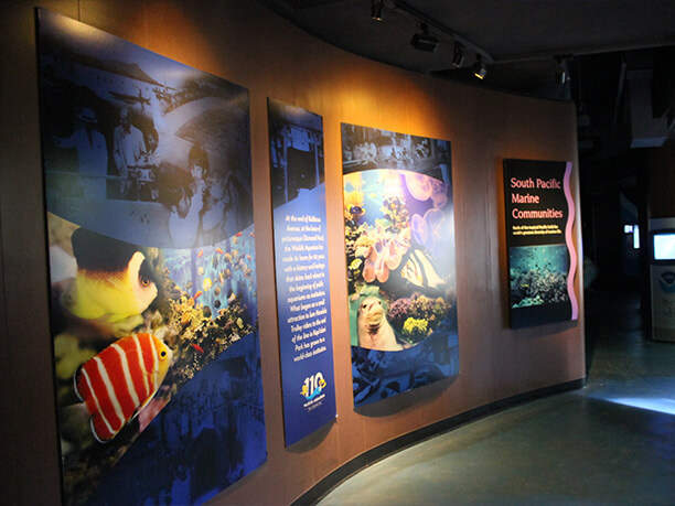 百年の歴史のワイキキ水族館で海の美しさと豊かさを体感