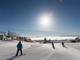 スキーをする人たち