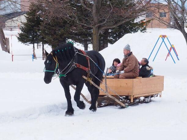 お馬さんが引いてくれる雪ぞり