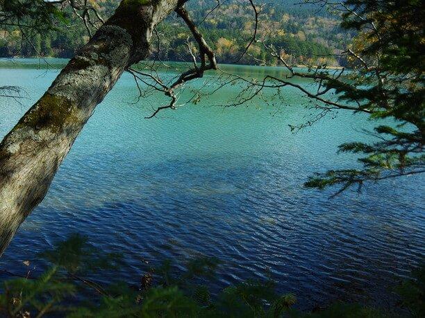 神秘的な雰囲気を持つ湖