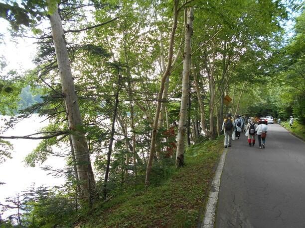 湖を囲むようにある散策路