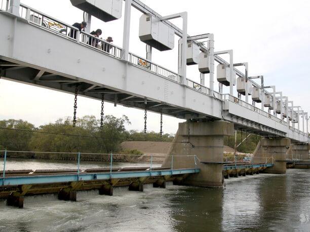 屋外の観覧橋から力強く泳ぐサケたちを直接見られる