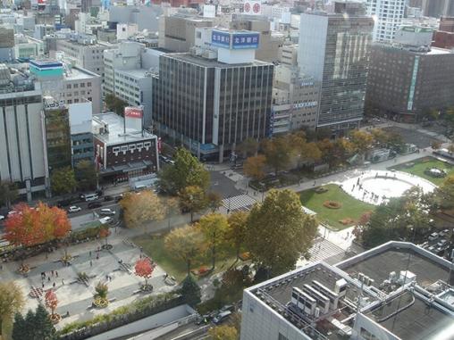 空から見る大通公園