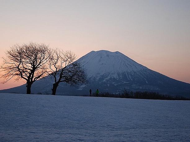 美しい雪景色