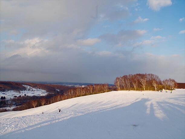 広大な雪原