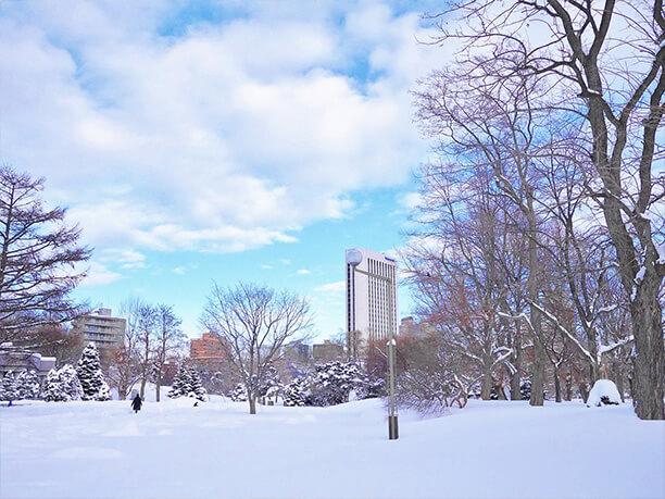 雪が積もった中島公園