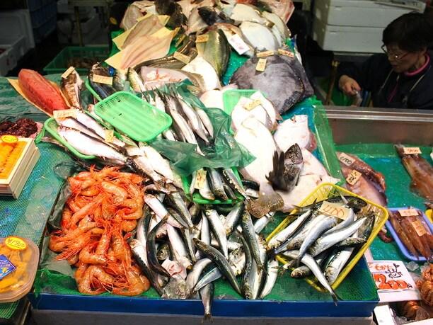 新鮮な魚類