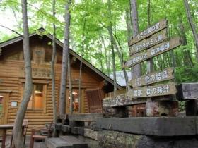森の中のお店