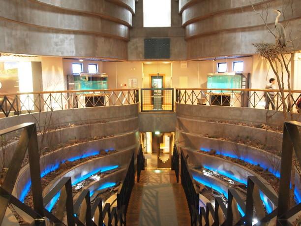 展望台二階