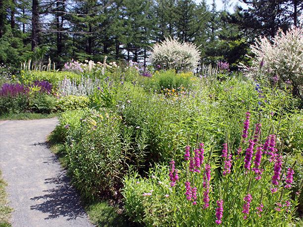街道沿い庭園