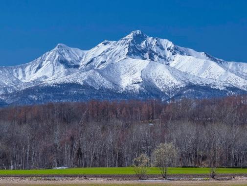北方的風貌の山