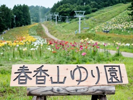 春香ゆり園の看板