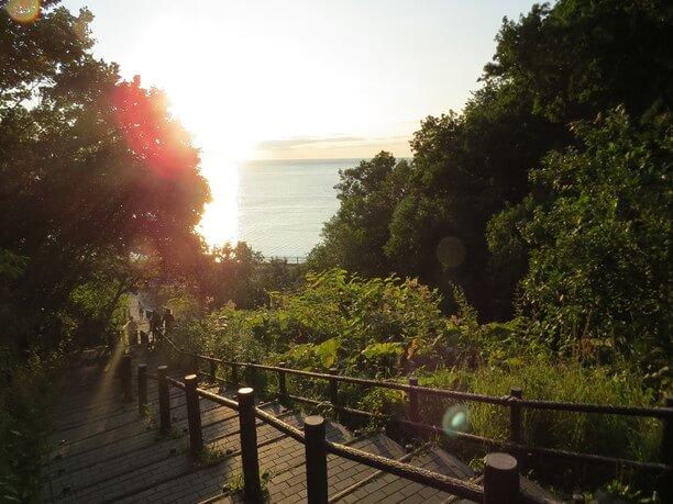 海と森を見渡せる絶景