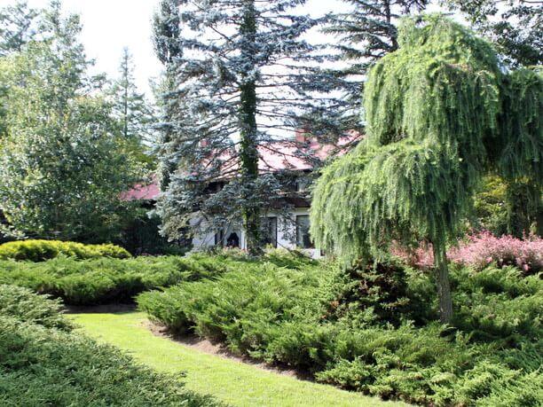 赤屋根の家