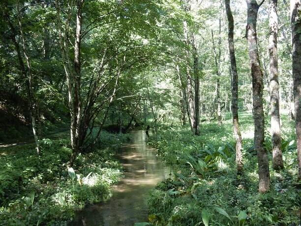 ウツナイ川