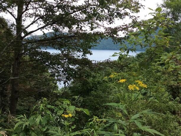 倶多楽湖(くったらこ)