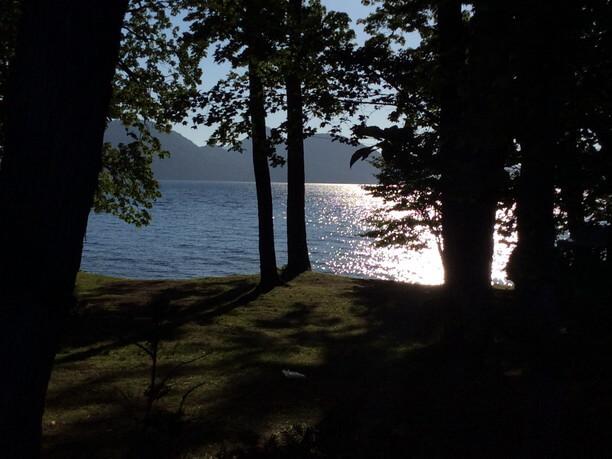 木々から覗く湖