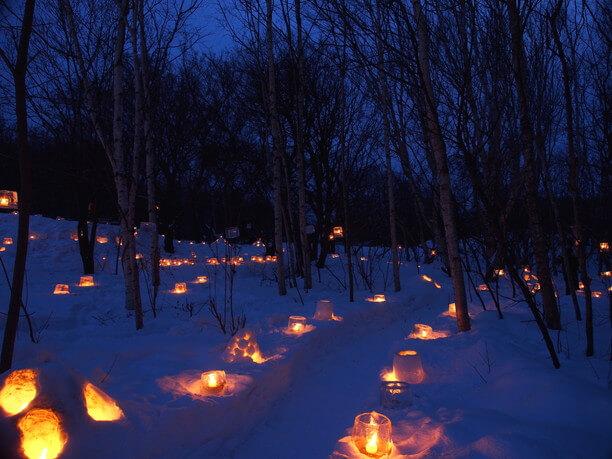 林の中の雪あかり