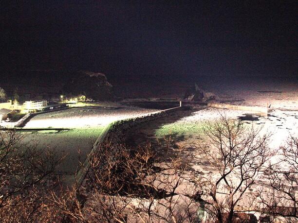 流氷で真っ白に埋まる海面