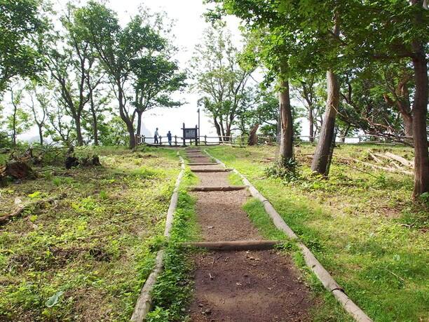 天然の樹木に囲まれた癒しの小道