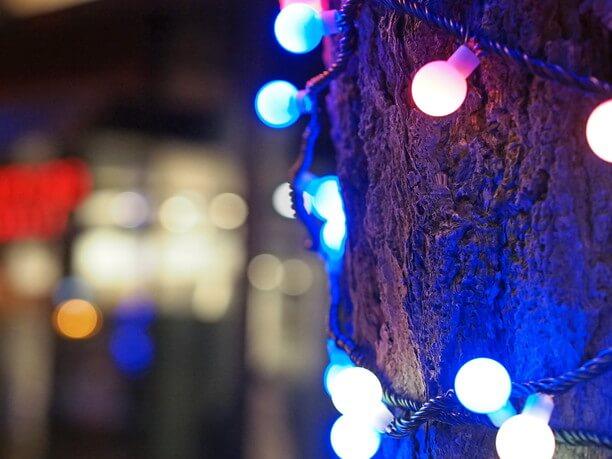 ライトアップされたイチョウの木