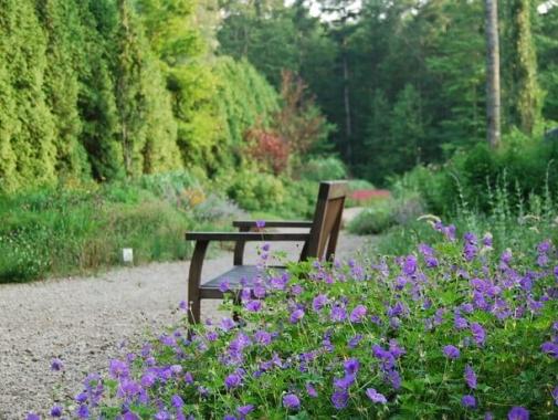 ガーデン内にあるベンチ
