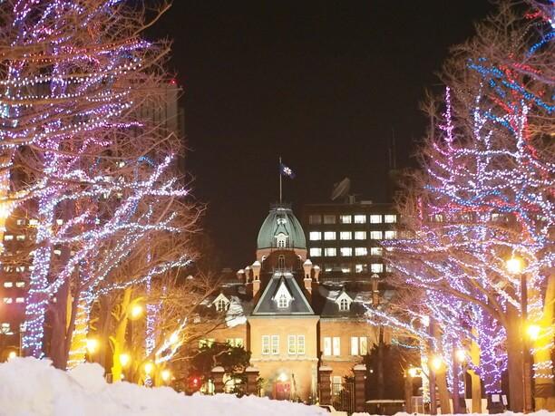 ライトアップされた木々と赤れんが庁舎