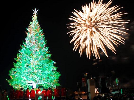 クリスマスツリーと花火