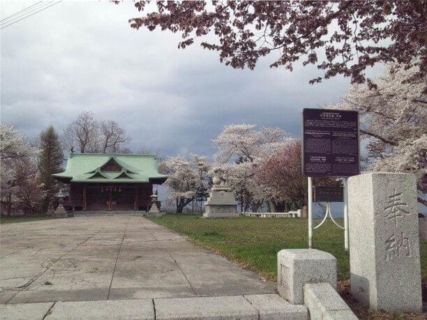 桜が満開の神社