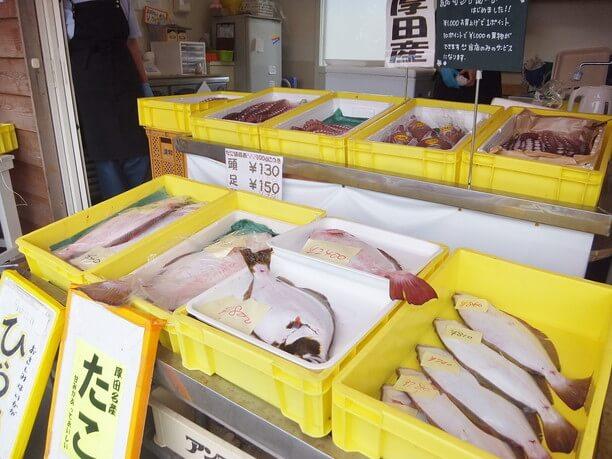 厚田産の魚