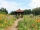 紫竹ガーデンサムネイル