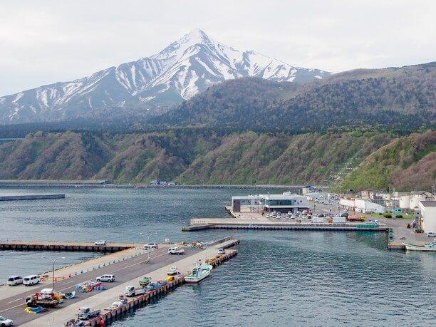 頂上から見える鴛泊港と濃いブルーの海