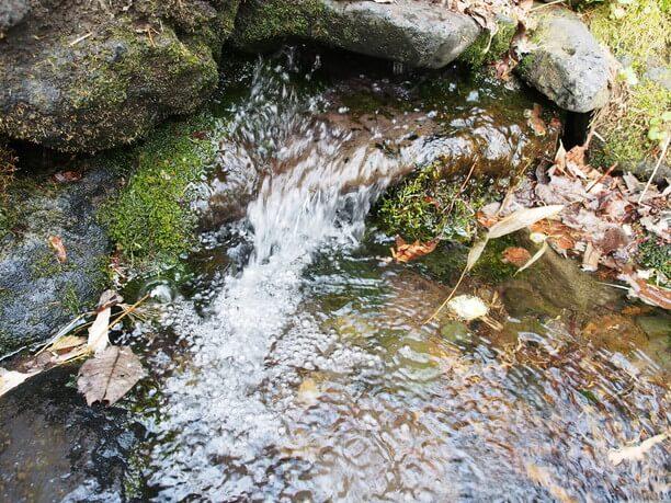 まろやかな口当たりの湧き水