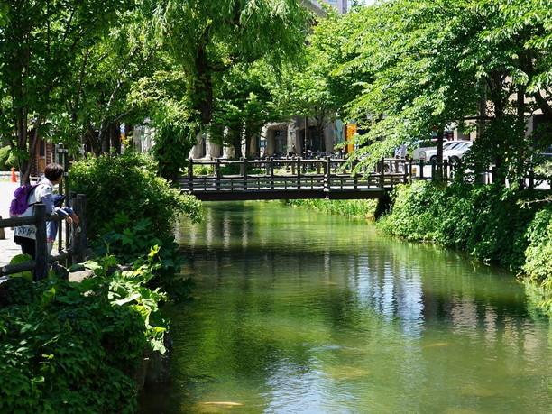 すすきのを流れる約2.5kmの小川「鴨々川」