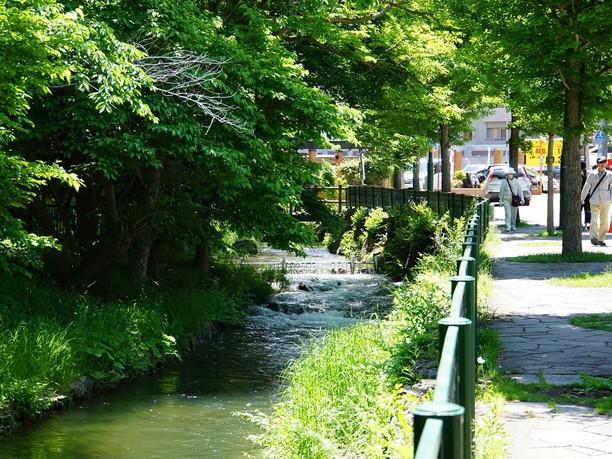 昔の面影を伝える貴重な川
