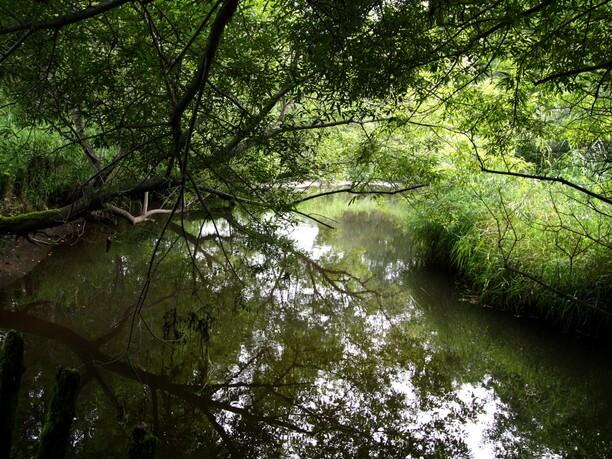 小さなポー川