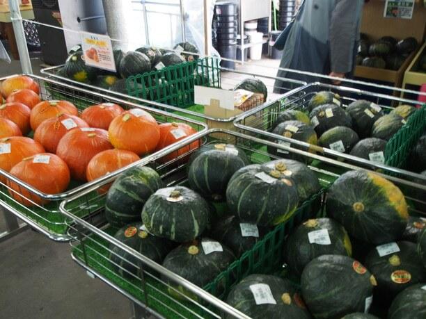 様々な農作物