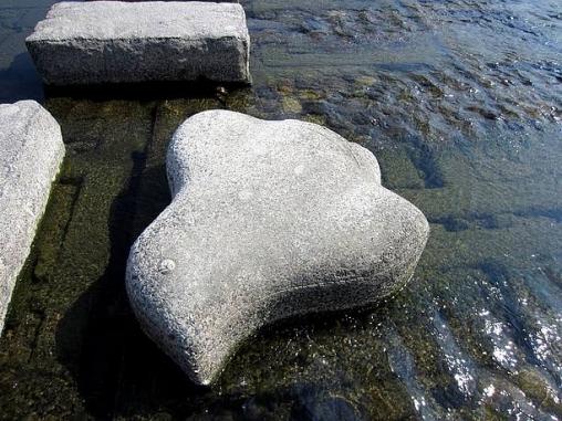 千鳥の形をした飛び石
