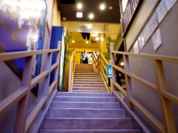8mの大階段