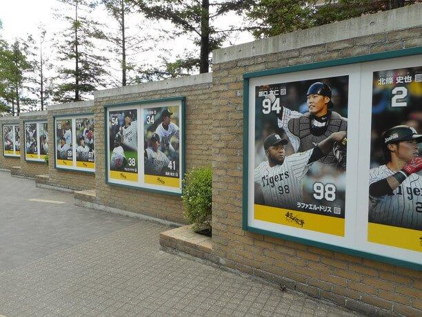 選手のポスター