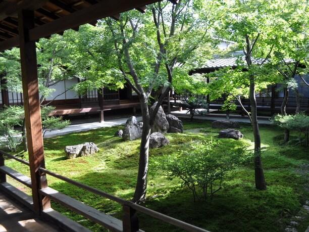 緑豊かな中庭