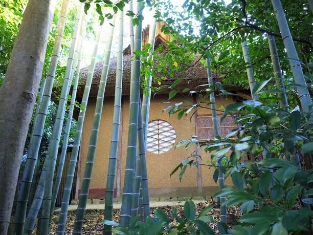 詩仙堂外観と竹