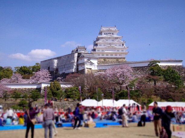 花見の季節の三の丸広場