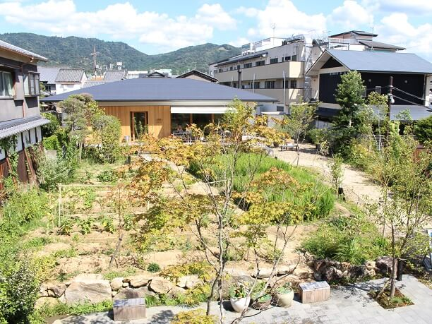 「鹿の舟」の中庭にある小さな田畑