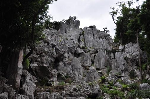 大石林山の石③