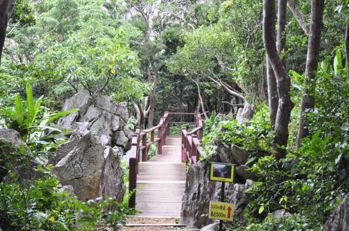 大石林山の橋