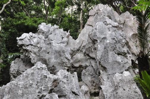 大石林山の石④