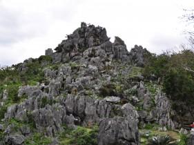 大石林山の大岩