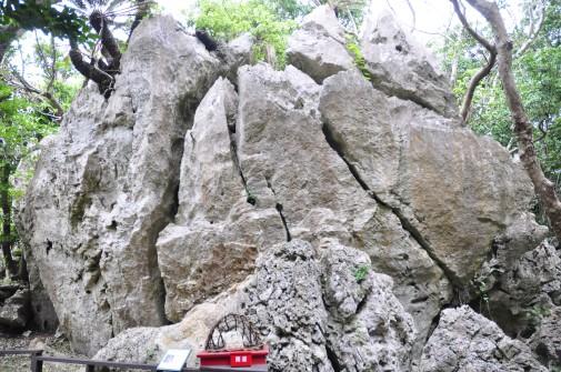大石林山の石⑥