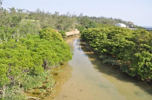 川の写真1